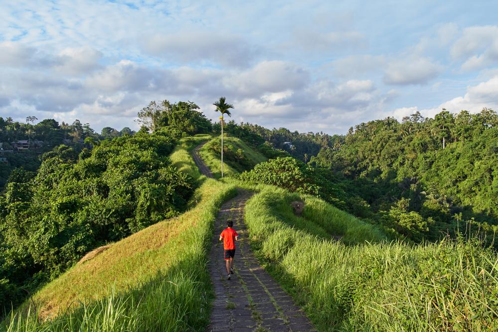 Campuhan Ridge Walk sacred trail in Bali