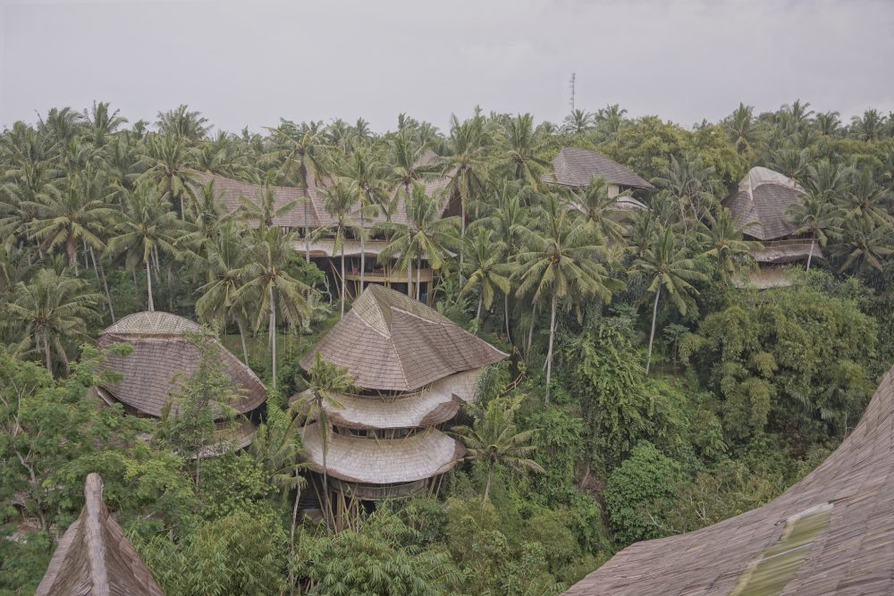 Take an eco-tour of the Green Vilage while you're in Ubud.