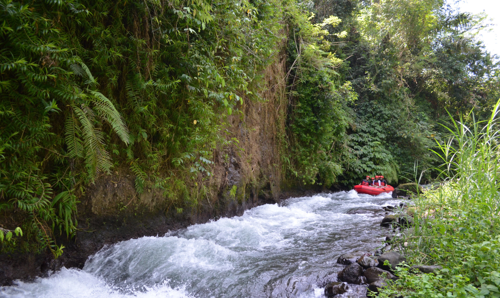 Take a white water rafting trip along the Ayung Rivre in Ubud.