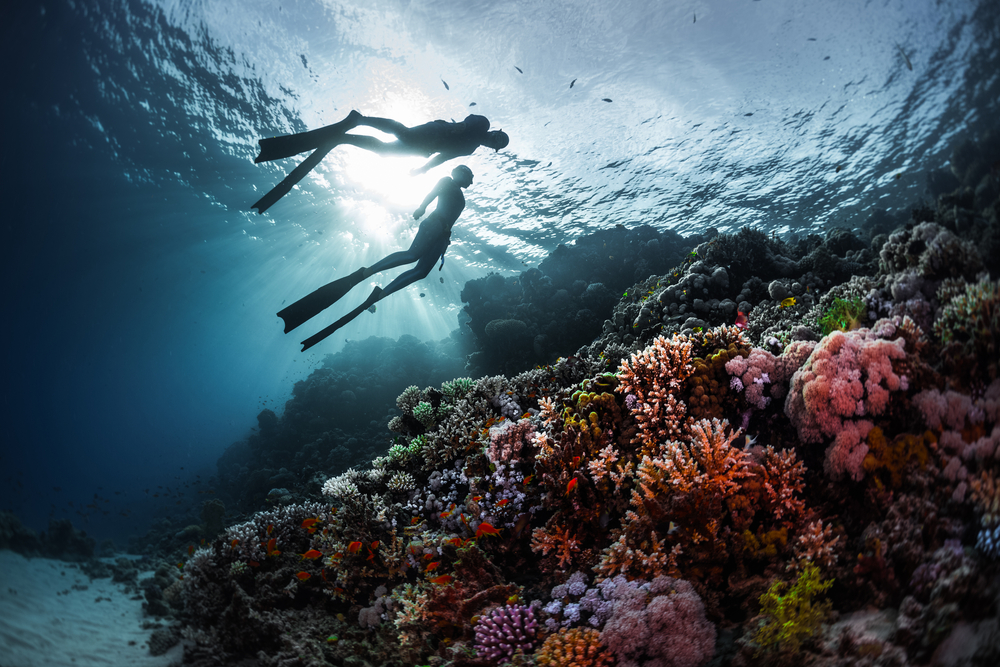 Exploring the underwater world with your soulmate is just amazing!