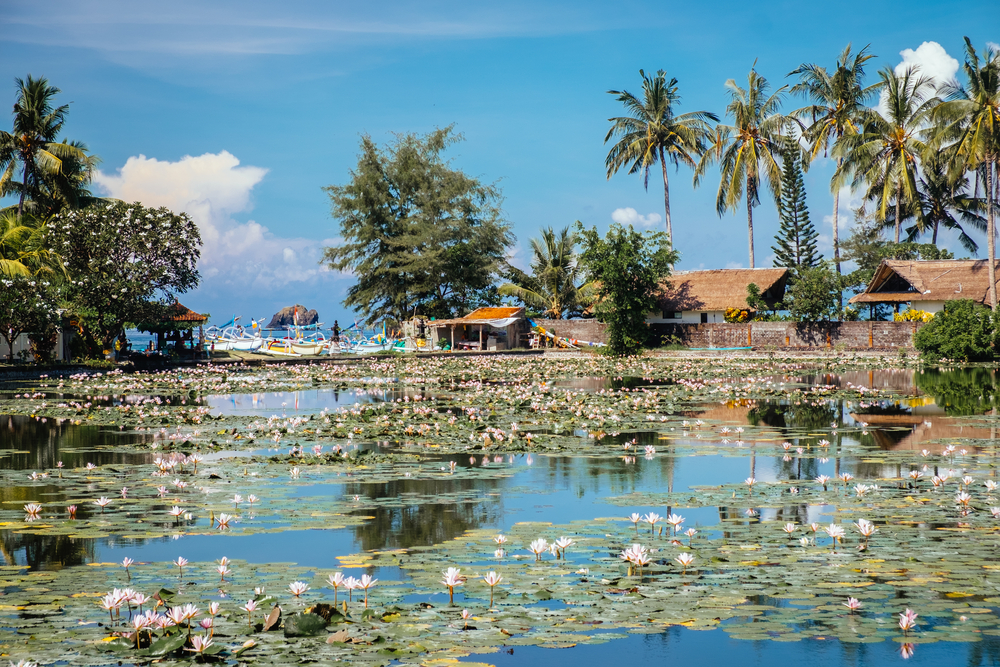 The Lotus Lagoon in Candidasa is a romantic place for a wander.