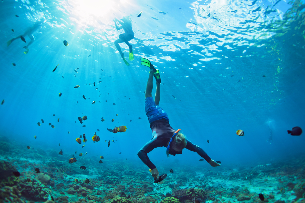 Divers and snorkelers can see incredible marine life around Bali, but where are the most favorable conditions?